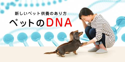 ペットのDNAを残す DNA Stock Assist