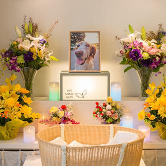 霊園セレモニーホールでのペット葬儀